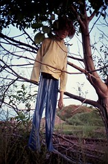 """Image0578 (Churechawa) Tags: new cute art modern composition wonderful spectacular creativity photography photo amazing pretty artist view spirit contemporary fine picture atmosphere grand poetic mind soul stunning lovely charming elegant melancholy delicate striking author graceful epic breathtaking impressive magnificent exciting alluring stylish pictorial imaginative mastery dazzling lyric astonishing harmonious pleasing thrilling inventiveness arts"""" """"visual eligiac"""