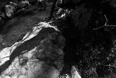 Remembering (Reptilian_Sandwich) Tags: longexposure shadow wild bw mountains newmexico water sparkles creek walking spring hiking stones canyon boulders trail algae afternoonlight blackrange railroadcanyon