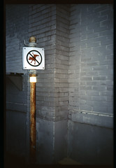 doesn't say anything about people (Beaulawrence) Tags: film grain analog lomograpy plastic fantastic toy camera cheap lens jcbm fa 868 point shoot slide color colour reversal e6 kodak ektachrome 100 vs chrome toronto on ont canada summer 2012 august aug sign pee dog wall dont vignetting riverside broadview industrial industry warehouse
