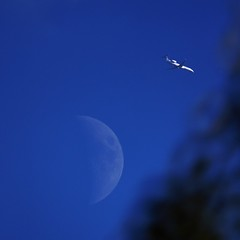 Jet passes in front of Harvest Moon at 40% of full on last day of summer (Stephen Little) Tags: moon mirror reflex mirrored harvestmoon waxingcrescent catadioptric daymoon 40full minoltaaf500mm minolta500mmf8 minoltaaf500mmf8 sonya77 minolta500mm jstephenlittlejr slta77 sonyslta77 sonyslta77v sonyalphaslta77v 40offull