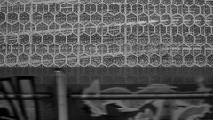 Rotterdam image (衰尾道人 www.ethanleephoto.com) Tags: leica city travel building architecture zeiss train graffiti rotterdam 28mm nederland snap bee m8 shape carpark hive zm