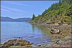 Ocean Bay Port Underwood, Marlborough, New Zealand (Blenheimer) Tags: trees sea newzealand water rural river coast bush sand walks tide bridges coastal rivers views stunning streams bays picturesque marlborough tidal tranquil hdr sounds creeks marlboroughsounds bay new island rockycoastline zealand south ocean port oceanbay beautiful scenery marlborough sounds newzealandsfinest underwood hdrmarlborough grahamlodge