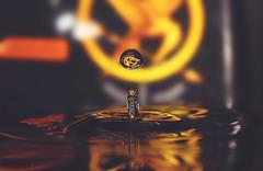The Hunger Games - W (Maria_RL) Tags: orange water canon eos book agua waterdrop juegos libro games drop hunger gota fam waterdrops naranja hambre thg jocs the llibre gotadeagua 600d thehungergames losjuegosdelhambre mariarl