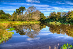 Autumn Blue (Ollie_57) Tags: autumn trees england sky water clouds canon reflections landscape photography for pond oct devon 7d recreation hdr 2012 efs1785mm ollie57 mygearandme mygearandmepremium mygearandmebronze mygearandmesilver mygearandmegold photograhyforrecreation cockswood