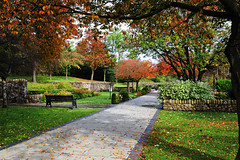 Autumn arrives at the Memorial Garden built on the original site of Pantglas Junior School, Aberfan,Merthyr Vale where 116 children and 28 adults lost their lives on October 21st 1966. (JBR*) Tags: october 21st 1966 disaster pantglas aberfan