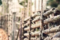 Bjurkers forngrd (netzanette) Tags: autumn heritage fall fence 50mm nikon sweden bokeh hlsingland vidja d80 nikond80 grdesgrd forngrd bjurker bjurkersforngrd