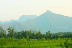 #Malakand #KPK #Mountan  (guljee3) Tags: malakand kpk mountan