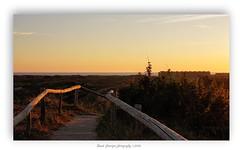 Zonsondergang Egmond aan Zee (Ruud Severijns) Tags: noordholland noordhollandsduinreservaat egmondaanzee nature