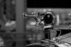 Free (Tiph Haine) Tags: canon 6d french franais france canon6d fullframe pleinformat canonfrance eos amateur lightroom canoneos6d 24105 24105mm f4 is usm l llenses canonef24105mmf4lisusm llens tpix discover bruxelles belgium travel ville city autoworld cars