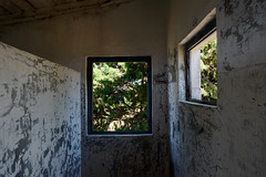 il mio mondo appeso al muro (francesco melchionda) Tags: lustica colors war explore abandoned decay decadence urbex urbanexploration