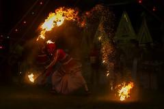 devol madu fire dancer-3 (Priyantha de Alwis) Tags: srilanka priyanthadealwis ginimadushanthikarma devolmadushanthikarma gammadushanthikarma dance dancing traditionaldance traditionaldancing srilankantraditionaldancing srilankantraditionaldance lowcountrydancing traditionallowcountrydancing srilankantraditionallowcountrydancing paranormal supernatural culture metaphysical ritual rituals srilankaritual srilankarituals bringpeaceandprosperity tribal srilankatribal shaman shamanism pattini hindupattini hindupattinicult healing psychologicalhealing healingritual healingrituals astrology pooja pattinipooja religion belief healingceremony healingceremonies vishnudeviyo samandeviyo kataragamadeviyo nathadeviyo narangodapaluva batuwattatemple batuwatta ethnicreligion ethnicreligions shamanicbeliefs shamanicpractices religiousecstasy supernaturalrealms supernaturaldimensions indigenousreligions contactspirit priest psychologicalcrisis exorcising exorcism paththini hindupaththini hindupaththinicult devolmadu gammadu ginimadu occult shanthikarma