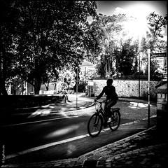 Jgerberg (ZaglFoto.de) Tags: deutschland de sachsenanhalt hallesaale street streetphotography streetphotographer strase