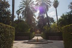 Jardines del Alczar (Bazinga!) Tags: siviglia sevilla seville realalcazar alcazar jardines jardinesdelalcazar