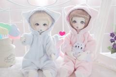 Kittens . (leoooona08) Tags: bjd doll dollfie balljointeddoll dz dollzone