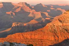 grand canyon (stefanorasicaldogno) Tags: usa grand canyon arizona