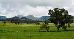 160925_Warrumbungles_5798.jpg (FranzVenhaus) Tags: trees creek countrybush plants cliffs australia mountains warrumbungles nsw water newsouthwales wilderness rocks aus