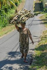 _DSC3832_Bali_09_16 (Saverio_Domanico) Tags: bali indonsie munduk voyage