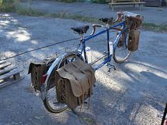 Tandem (Thethe35400) Tags: cycle bicycle bicyclette vélo bike fahrrad bicicletta bicicleta rothar tricycle triciclo trírothach dreirad grandbi txirrindola