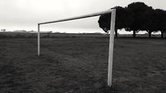 Sans filet (srouve78) Tags: but football stade