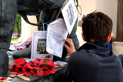 Reading the testimonials (david firn) Tags: memorial war military poppies ww2 remembrance bomber pilot worldwar raf pilots armedforces aircrew royalairforce testemony