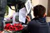 Reading the testimonials (david firn) Tags: memorial war military poppies ww2 remembrance bomber pilot worldwar raf pilots armedforces aircrew royalairforce testemony