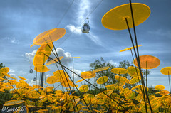 About.... yellow disks (Janslb) Tags: art yellow raw disk venlo geel cableway floriade limburg kabelbaan allrightsreserved