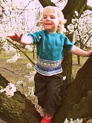 Oscar (Heart felt) Tags: flowers newzealand children spring oscar blossom sadie plumblossom wairarapa greytown fruittrees teaparties