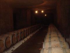 7916986354 47de975c2f m Bordeaux 2009