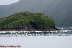 IMG_3993.jpg (MonkeySeeMonkeySnap) Tags: old blue cold ice nature water alaska boat ancient ak glacier seward aialik
