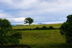 The Scottish Borders (Rotdenken (Jules Rigobert)) Tags: voyage uk greatbritain trip travel summer sky cloud tree green nature field landscape scotland photo reisen europa europe flickr estate unitedkingdom sommer sony hills verano gb flickrcentral dslr t ru bushes borders regnounito selkirk 2012 ue viajar schottland reinounido ecosse scozia cosse scottishborders royaumeuni viaggiare scocia vereinigtesknigreich mygearandme rotdenken julesrigobert