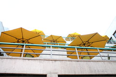New Umbrellas (Robert E. Kennedy Library at Cal Poly) Tags: umbrellas