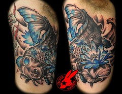 Blue Koi tattoo by Jackie Rabbit (Jackie rabbit Tattoos) Tags: city blue fish flower water tattoo asian japanese star virginia cool colorful lily lotus good awesome great roanoke va koi oriental coi koy jackierabbit