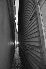 Bergen (craigrkr) Tags: blackandwhite bw norway architecture cobblestone alleyway bergen narrow 2012