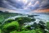 She's Got a Secret Garden (Pandu Adnyana Photography Tour) Tags: bali beach rock sunrise indonesia landscape photography tour guide baliphotography manyar balitravelphotography baliphotographytour baliphotographyguide
