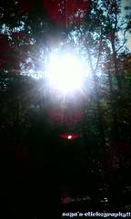 Sun rise in forest! (sugavinesh1) Tags: sun set forest canon photography rise suga kerela ris 600d vythri sugavinesh