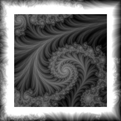 plumes (bloorose-thanks 4 all the faves!!) Tags: bw monochromatic fractal ultrafractal