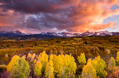 Epic Fall! (Dan Ballard Photography) Tags: fall colors dallas colorado changing aspens ridgway divide