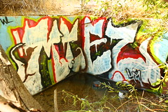 Miez (MR. NIC GUY ^.^) Tags: california streetart art graffiti losangeles los paint angeles culture spray lm miez