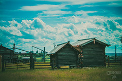 _MG_8941-80 (the_insk) Tags: village outdorse nature architecture green summer russia sky clouds