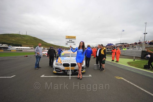 Rob Collard on the grid during the BTCC Knockhill Weekend 2016