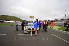 Rob Collard on the grid during the BTCC Knockhill Weekend 2016 (MarkHaggan) Tags: knockhill scotland motorracing 2016 motorsport cars racing btcc btcc2016 14aug16 14aug2016 grid britishtouringcarchampionship britishtouringcarchampionship2016 gridgirl gridgirls robcollard collard teamjct600withgardx teamjct600 bmw bmw1series bmw125imsport