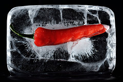 Hot and Cold (Apionid - gone sailing) Tags: chilli ice frozen hotandcold iceandfire werehere hereios nikond7000 365the2015edition 3652015 day230365 day230 18aug15