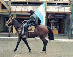 Gaucho on a horse (Ins Luque Aravena) Tags: lluvia gaucho caballohorse rain flag argentina bariloche patagonia