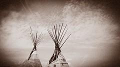 Two TP (Mark Blanchard) Tags: tipi tepee arizona