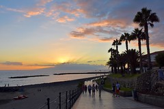 Strolling (Nige H (Thanks for 7.5m views)) Tags: nature landscape seascape sunset sea palmtrees seafront shoreline strolling strollers tenerife costaadeje sky cloud