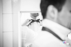 HZP-Jana-Philip-2-17-2 (hochzeitsphotos-eu) Tags: fotograf hochzeit hochzeitsfoto hochzeitsfotograf hochzeitsfotografie hochzeitsfotos hochzeitsphotos jana janaundphilip philip weintor wedding weddingphotography