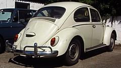 VW Käfer (vwcorrado89) Tags: vw käfer volkswagen typ type 1 typ1 type1 beetle bug 1300 export