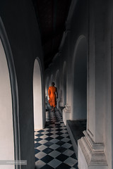 Monk. (Marziolino) Tags: monk orange buddhist monaco buddha shadows contrast church pagoda tradition religion