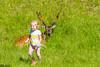 DSC_9591 (Costi Jacky) Tags: france naturereserve parcdemerlet