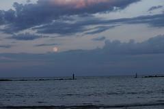 Luna che sorge - (Un mese dopo) Ago. 2016 (finoaserastoria) Tags: therewherethemoonrise lunachesorge luna moon mareadriatico scogliere reef villarosate